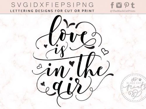 Love is in the air svg - TheBlackCatPrints