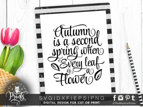 Autumn is a second spring SVG