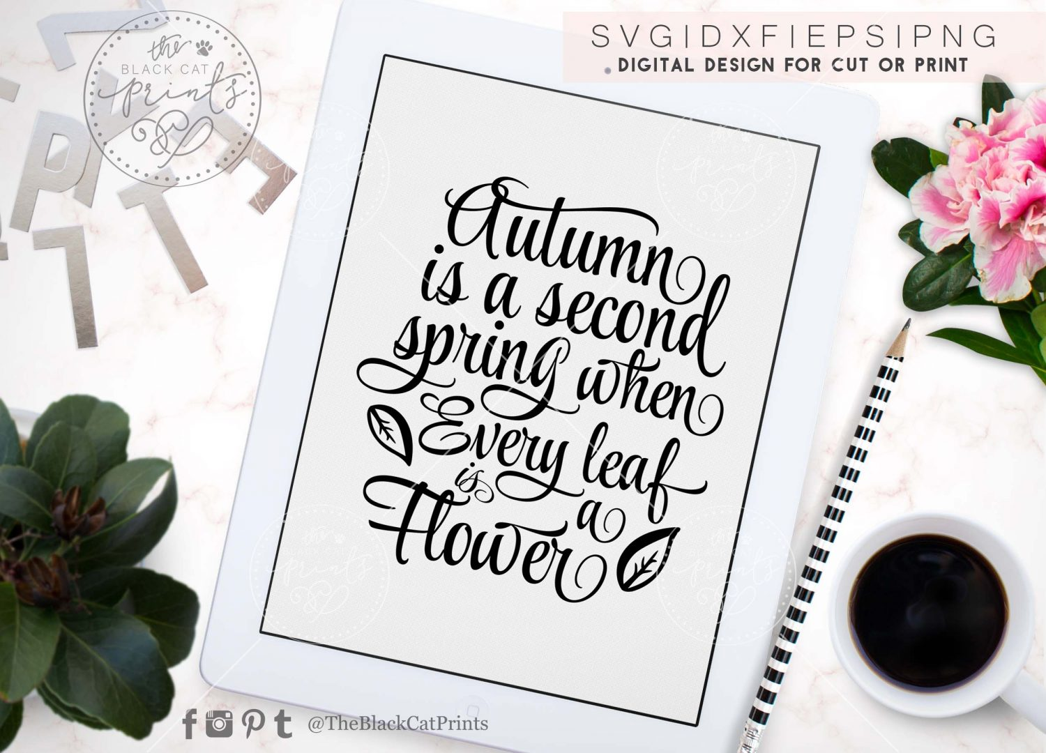 Autumn Is A Second Spring Svg Dxf Png Eps ⋆ Theblackcatprints
