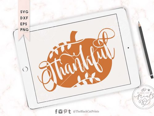 Thankful pumpkin svg