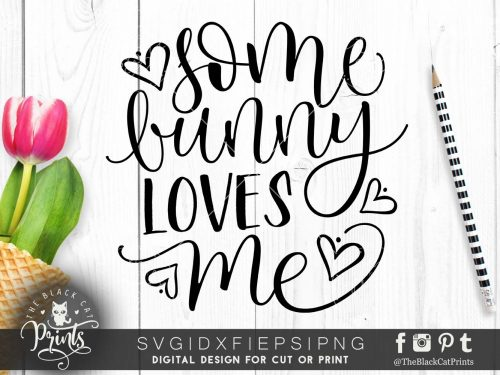 Some bunny loves me svg