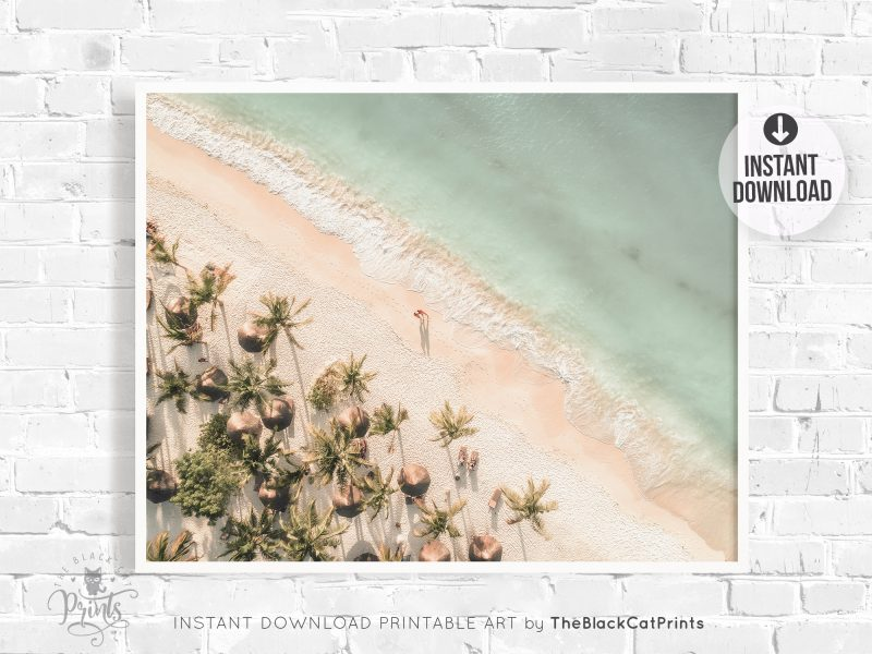 Beach & Palms Aerial View Photography Print