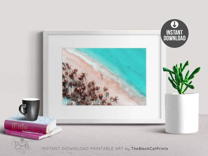 Tropical Beach Aerial View Photography Print