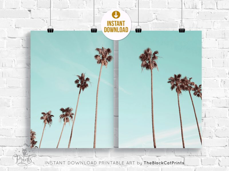 Tropical Palms Photography Print SET