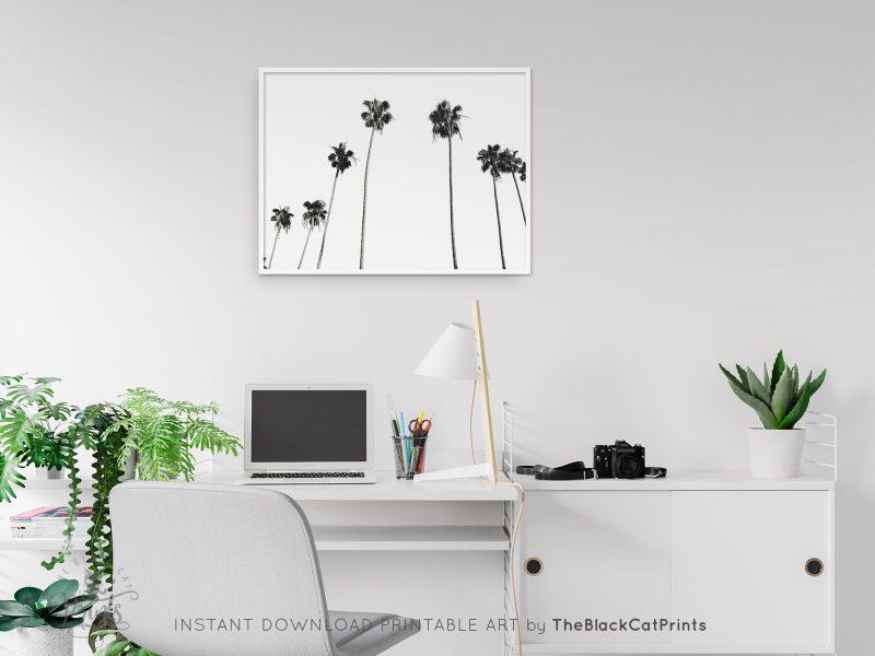 Palm Trees Photography Print Black & White