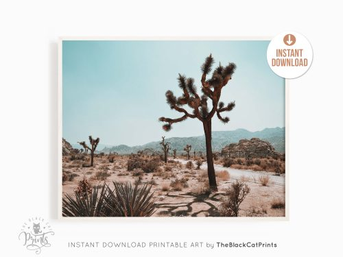 Joshua Tree Photography Print