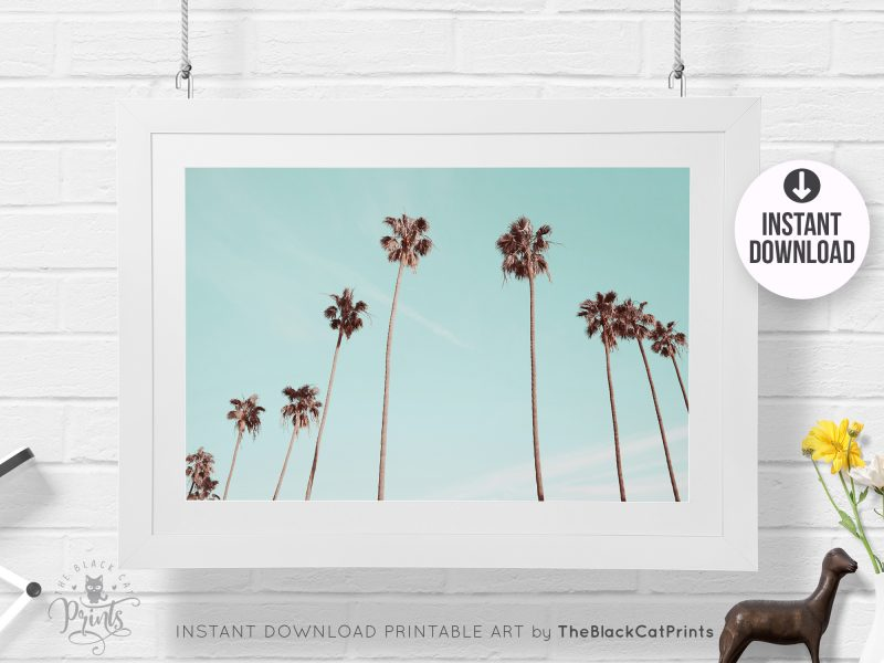 Palm Trees Photography Print Teal Gold