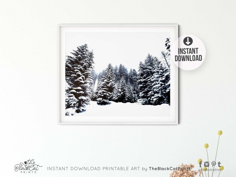 Winter Forest Snow Photography Print
