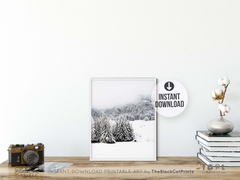 Foggy Winter Forest Photography Print
