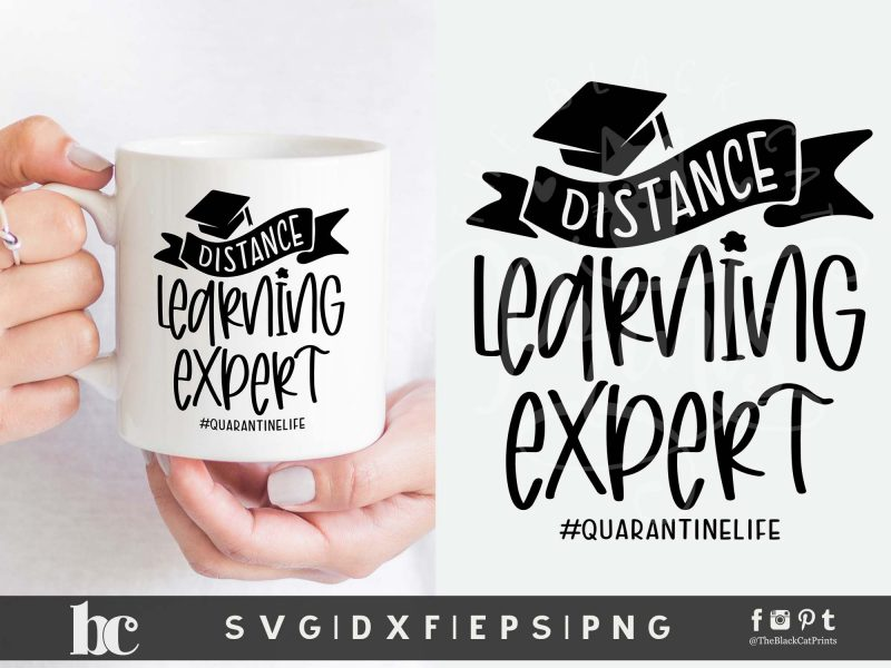 Distance Learning Expert SVG
